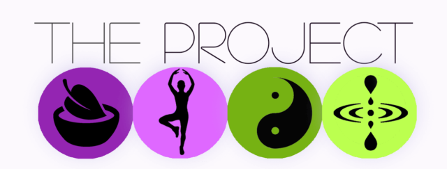 the project logo colourful